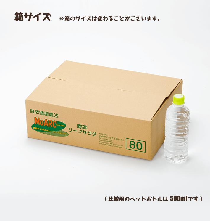 ジュース用ニンジン(4.5kg)