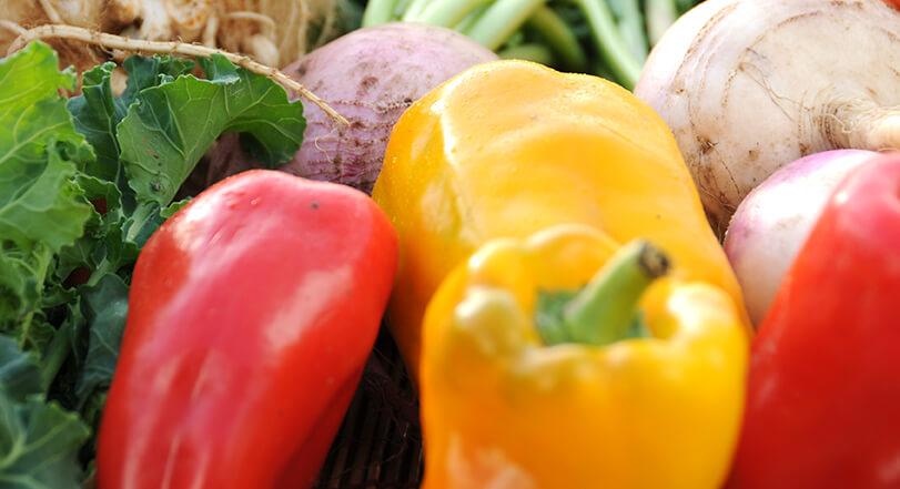 有機・無農薬の良質でおいしい野菜