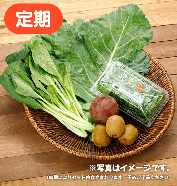 【お得な定期購入】グリーンジュースセット
