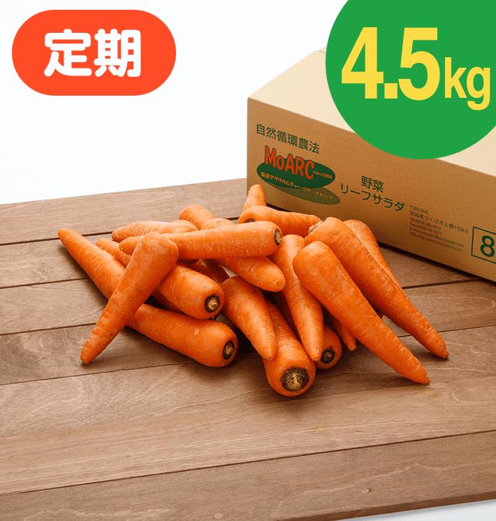 【お得な定期購入】ジュース用にんじん(4.5kg)