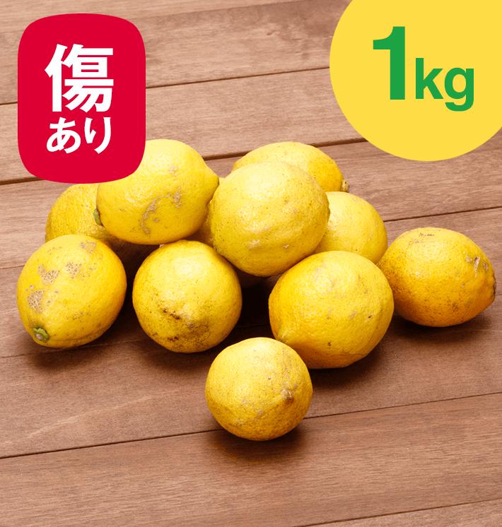 国産レモン傷あり・不揃い(1kg)