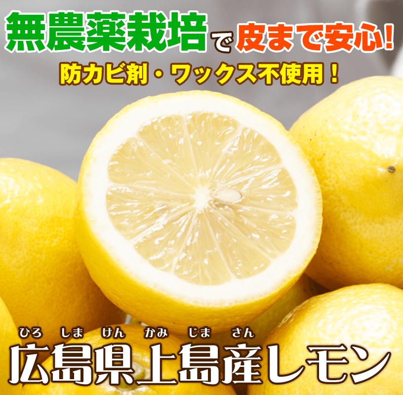 広島県上島産無農薬レモンは防カビ剤やワックス不使用