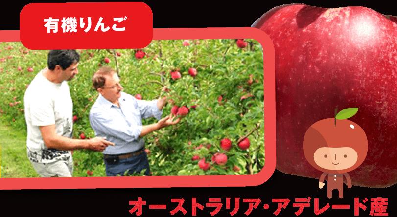 にんじんジュースに使われる有機りんごの産地紹介