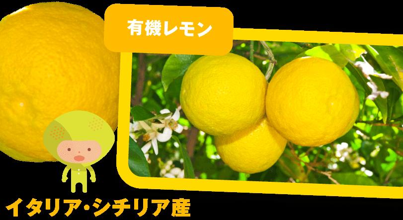にんじんジュースに使われる有機レモンの産地紹介