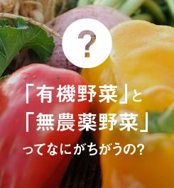 有機野菜と無農薬野菜ってなにがちがうの?